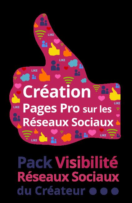 Pack visibilité réseaux sociaux du créateur : Création de pages professionnelles sur les réseaux sociaux - Agence ekooo Maisons-Alfort (94)